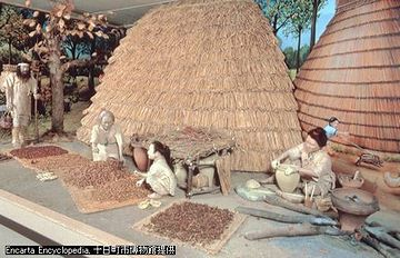 縄文人の生活。新潟県『十日町博物館』の展示。