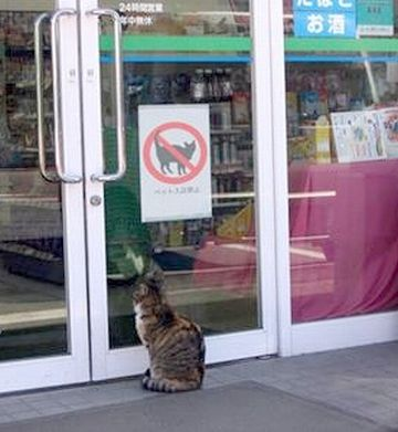 閉まってるドアの前で、呆然と立ってる人を見かけます