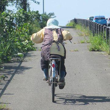 推定年齢75歳。急な登り坂を、時速20キロを超えるスピードで駆けあがってたそうです。