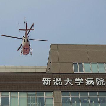 その場から、救急車よ