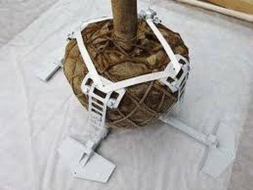 土の下で根鉢を固定するタイプの支柱