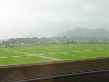 新潟平野の水田