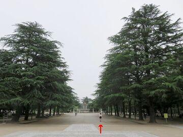 名古屋市の鶴舞公園