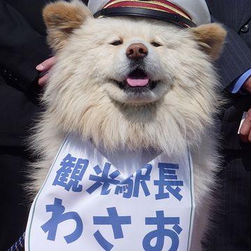 『鰺ヶ沢駅』の観光駅長
