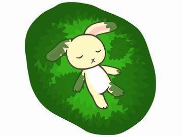 眠りに落ちるウサギ