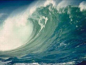 津波が来ないことを祈るばかりじゃ