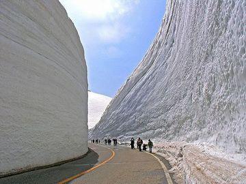 立山黒部アルペンルート「雪の大谷」