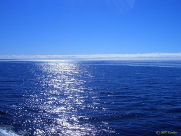 ブルーは海ね?