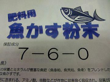 ニシンやイワシは、肥料用の魚粕に加工して出荷したそうです