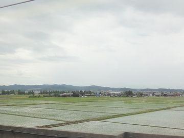 『長岡駅』を出ました