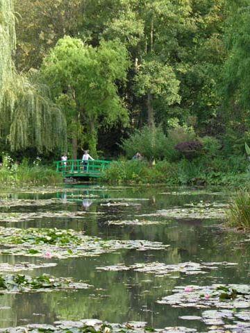 「モネの庭」睡蓮の池