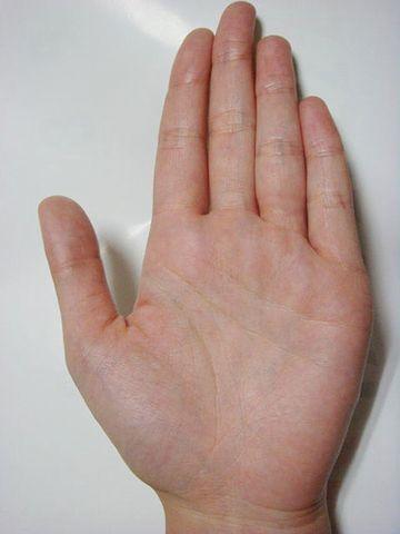 一番高いのが、中指でございます