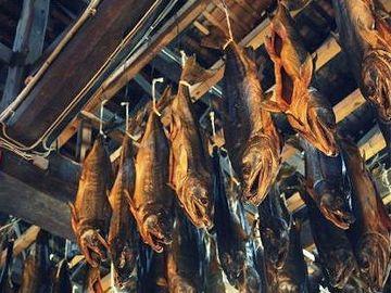 名産は、三面川の鮭