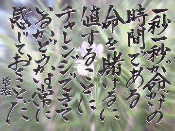 川上哲治さんの言葉かと思いましたが……。違ってました。浜本哲治さんという元早大ラガーマンの方でした。