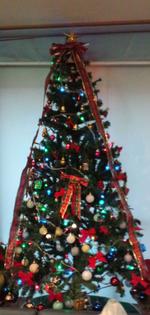 クリスマスツリーあおい