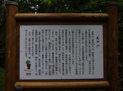 18 (800x591)