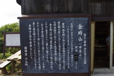 29 (800x531)