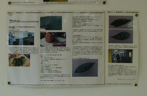 14壁面展示3(松戸高デッサン講習会)