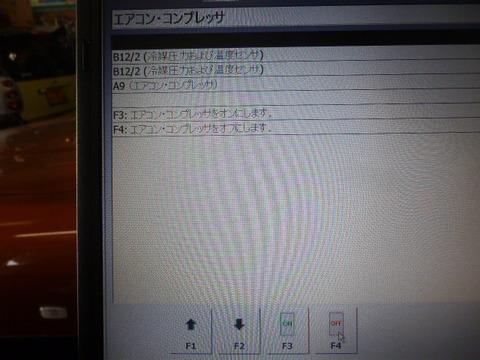 P1020257