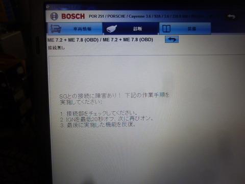 P1030519