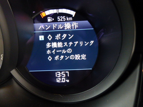 P1190007