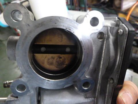 P1030361