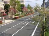 prefectural road