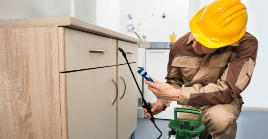 Lợi ích của việc thuê dịch vụ kiểm soát dịch hại