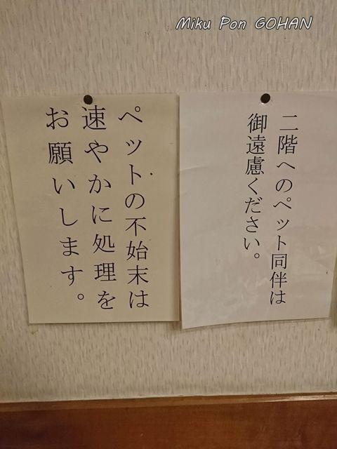 11DSC_1359