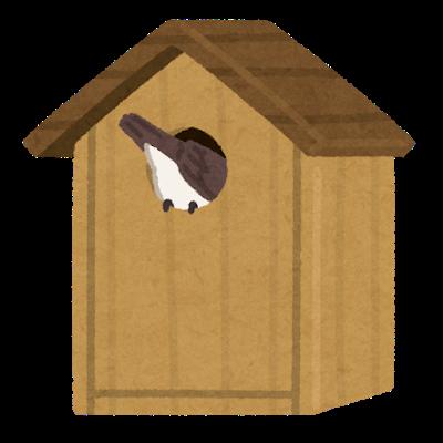 bird_subako_bird