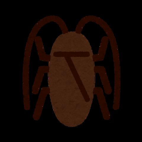 bug_mark16_gokiburi