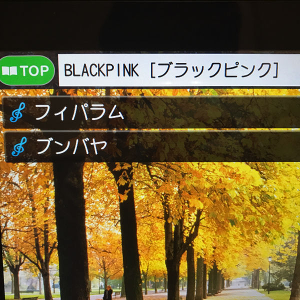 BLACKPINKカラオケ