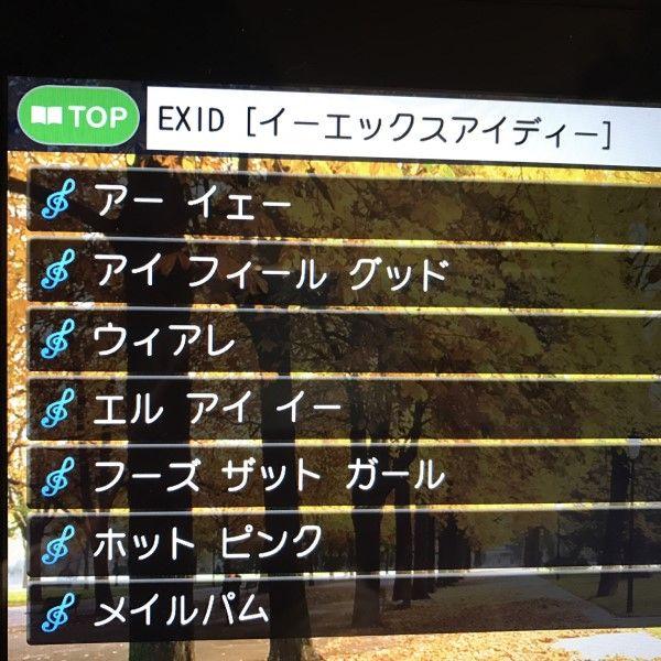 EXIDカラオケ