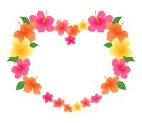 花のハートフレームハイビスカス