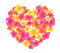 花がいっぱいのハートハイビスカス