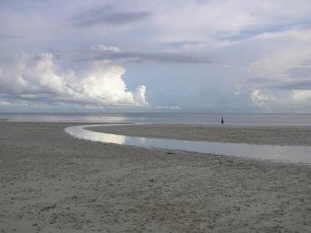 潮が引いた海岸と一本の川