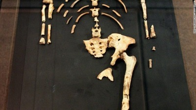 ethiopia-lucy-skeleton-national-museum-exlarge-169