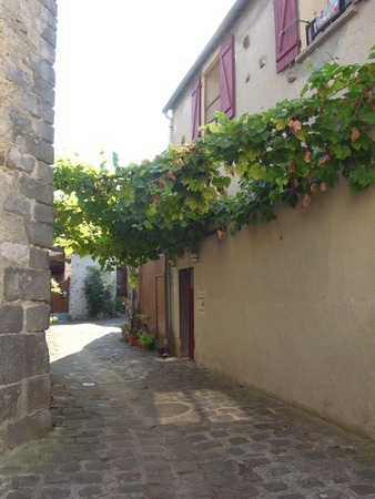 RIMG52096 - Copie - Copie