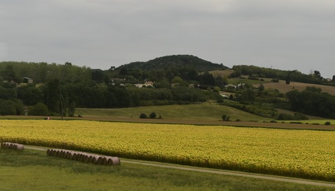 風景・穀倉地帯
