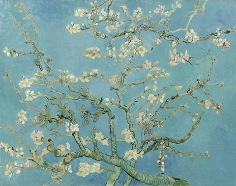 花咲くアーモンドの木の枝vangoghmuseum-s0176V1962-800