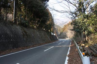 梅田の山の中