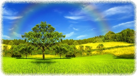 _Sky_Summer_Rainbow_Grass_436957