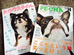 本日発売のPE・CHAとチワワスタイルに型紙提供させていただきました!