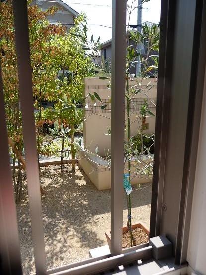 浴室の窓から・・・