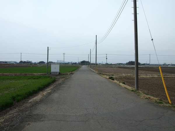 P3180040