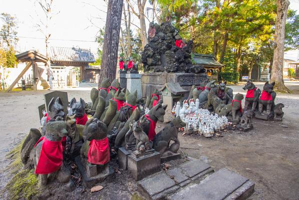 20161209_kasama-inari-50