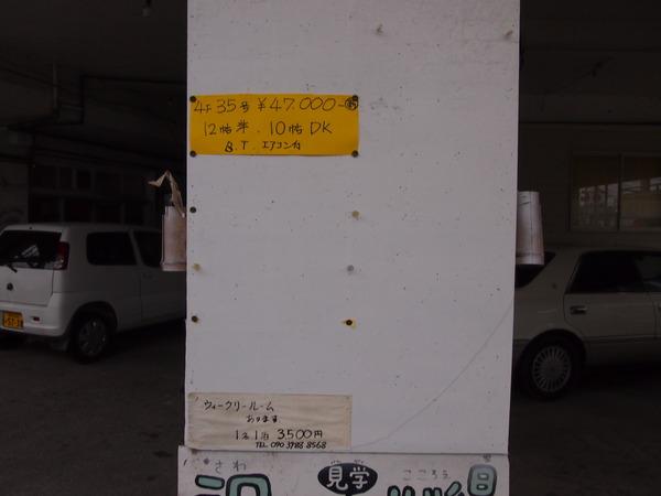 P8247567