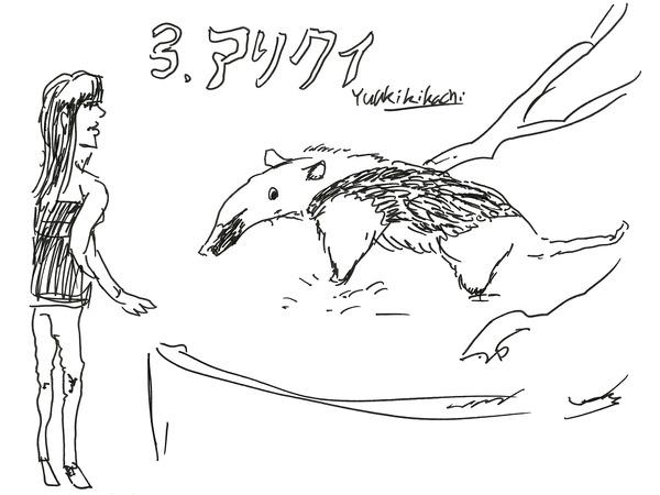 20_kikuchi