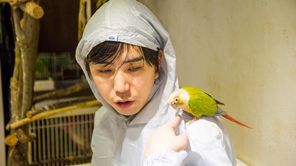 ・160925_bird-44