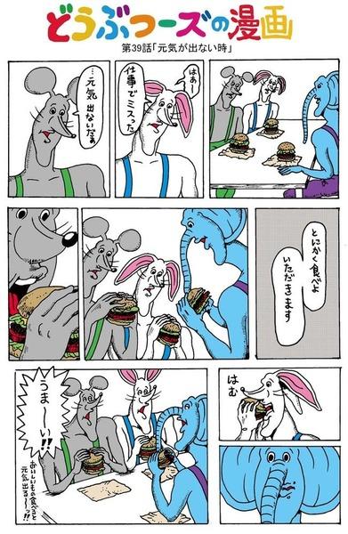 15_kikuchi